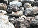 守山石の景石