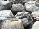 京町屋搬出景石