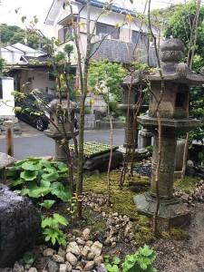 家の前庭5